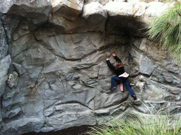 Wilderness Explorers at Disney's California Adventure - Rock Wall